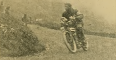1909 ACU6DAY MUSTARD
