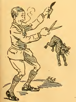 1911 TT MASCOTT A:W