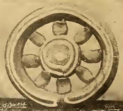 1907 sugarwheel