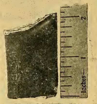 1912 PUNCTURE