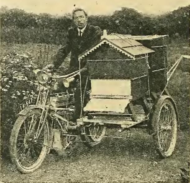 1914 BEE COMBO