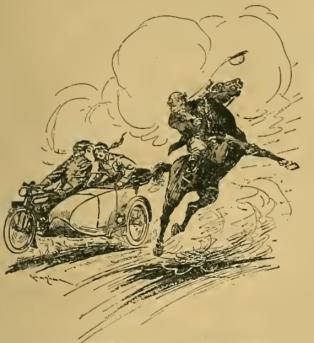 ADOLPHUS HORSE AW