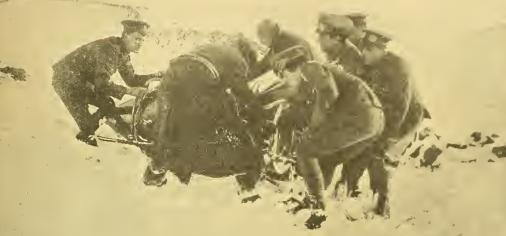 1915 PENNINES DRs
