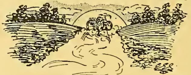 1915 XMAS YARN 8
