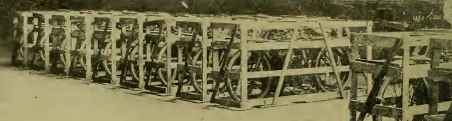 1919 AUCTION DUGGIES